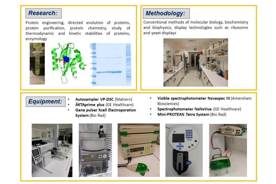 lab1-protein-engineering.jpg